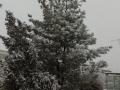 ashgabat_winter5