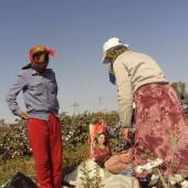 Monitoring of Forced Labor during Cotton Harvest Campaign in Turkmenistan (part 2)