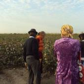 Monitoring of Forced Labor during Cotton Harvest Campaign in Turkmenistan (part 1)