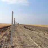 На спорном рубеже туркмено-афганской границы прошла проверка