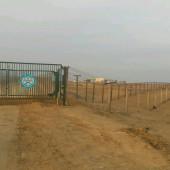 Таможенная служба Туркменистана: «Без подушек безопасности машины ввозить нельзя!»