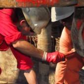 Более 400 газовиков уведомлены о грядущем увольнении в Лебапе