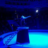Цирк, да не только: Впечатления ашхабадца от похода на цирковое представление (Фото)
