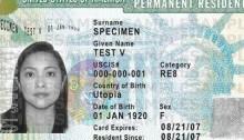 Green-Card-sample1