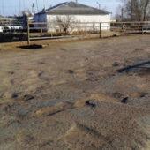 Дашогуз: После сноса домов при демаркации туркмено-узбекской границы люди вынуждены жить в коровниках