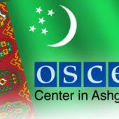Прост, как Дрозд. Глава Центра ОБСЕ в Туркменистане отчиталась о проделанной работе