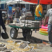Security services quell a riot in a Turkmen market