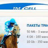Интернет в Туркменистане: Сеть расширяется, а связь все хуже