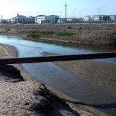 Весеннее безводье в Дашогузе грозит последующей нехваткой продовольствия (фото)