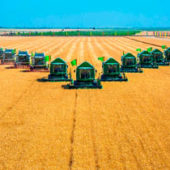 As grain harvest ends in Turkmenistan, media are silent about harvest victory
